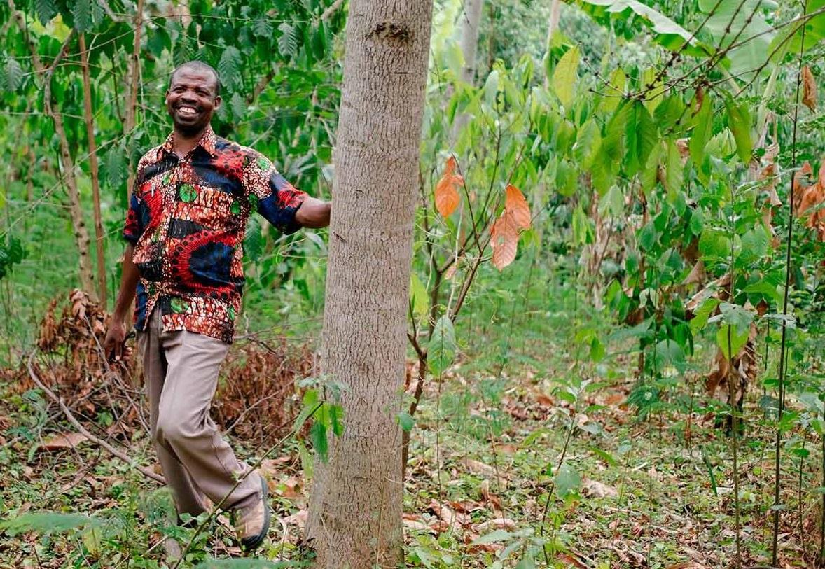 Ecosia, le moteur de recherche écologique qui promet de nous faire planter des arbres